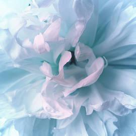 The Art Of Marilyn Ridoutt-Greene - In Sweet Harmony