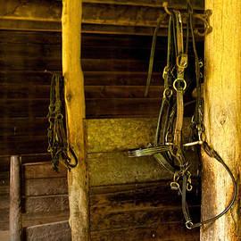 Kristia Adams - In the Barn