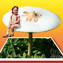 Mariarosa Rockefeller - In the Land of the Giant Mushrooms