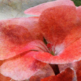 Marie Jamieson - In The Right Light - Pink Flower - Textured