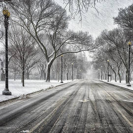 Robert Fawcett - Independence Avenue