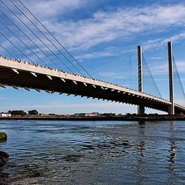 Francie Davis - Indian River Inlet Bridge 3