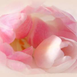 The Art Of Marilyn Ridoutt-Greene - Infinite Love