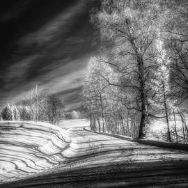 Erik Brede - Infrared Winter Road BW