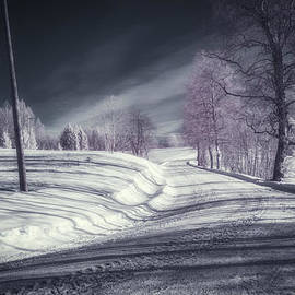 Erik Brede - Infrared Winter Road