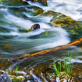 Elena Elisseeva - Intimate with river