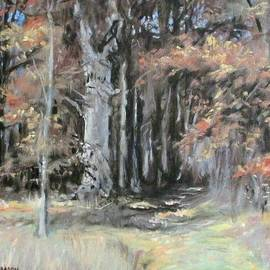Bonnie Mason - Into the Forest