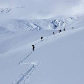 David Broome - Into The Polar Winter