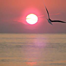 Brenda Conrad - Into the Sunset