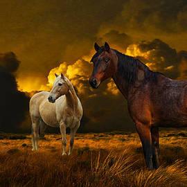 Davandra Cribbie - Into The Wild - Two