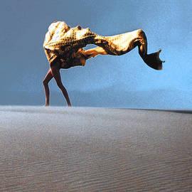 David Walker - Into The Wind