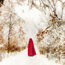 Jessica Jenney - Into the Woods
