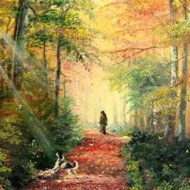 Sorin Apostolescu - Invitation to walk