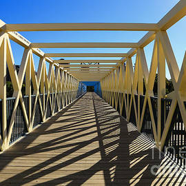 Rachel Cohen - Irene Hixon Whitney Bridge
