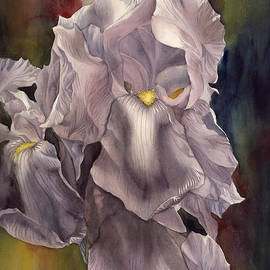 Alfred Ng - Irises with Red and Blue