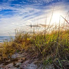 Debra and Dave Vanderlaan - Island Dunes