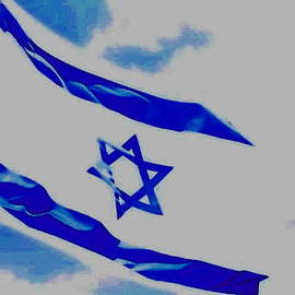Diane  Miller - Israeli Flag