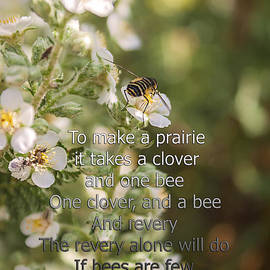 Janice Rae Pariza - It Takes One Clover And A Bee