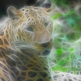 Gary Gingrich Galleries - Jaguar-6376-Fractal