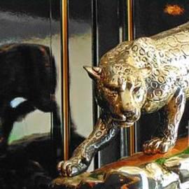 John Malone - Jaguar