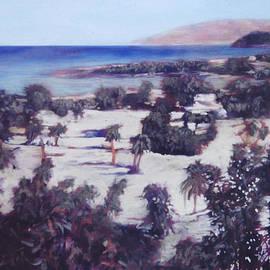 David Zimmerman - Jamaican Estate
