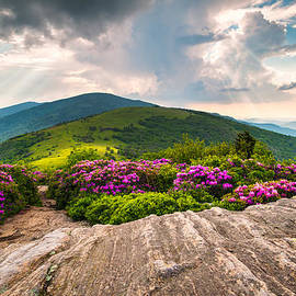 Dave Allen - North Carolina Blue Ridge Mountains Landscape Jane Bald Appalachian Trail
