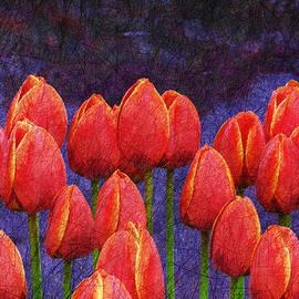R christopher Vest - Janes Tulips