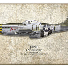 Craig Tinder - Janie P-51D Mustang - Map Background
