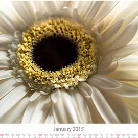 Alejandro Reyna - January Calendar Sheet
