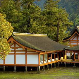 Sebastian Musial - Japan Itsukushima
