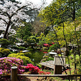 Holly Blunkall - Japanese Gardens