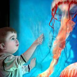 Jennie Breeze - Jellyfish Boy