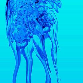 Stephanie Grant - Jellyfish Illusion
