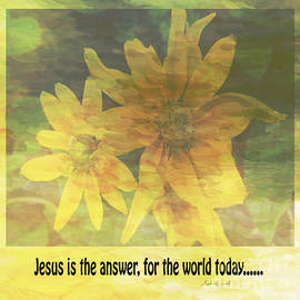 Beverly Guilliams - Jesus is The Answer John 14 6