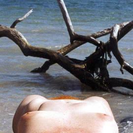 Broken  Soldier - Jetsam Flotsam and Driftwood