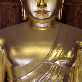 Jean Hall - Jogyesa Buddha
