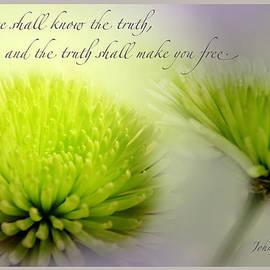 Debbie Nobile - John 8 verse 32