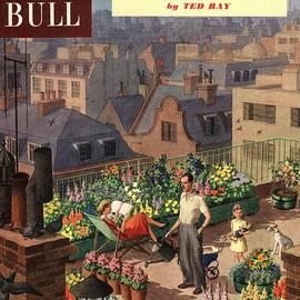 The Advertising Archives - John Bull 1950s Uk Roof Gardens