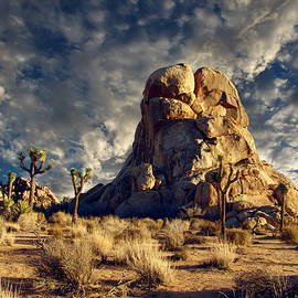 Glenn McCarthy Art and Photography - Joshua Tree National Park