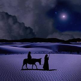 Schwartz - Journey to Bethlehem