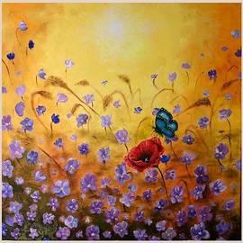 Draia Coralia - Joy
