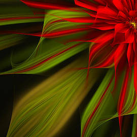 Linda Whiteside - Joyful Blossom
