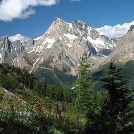 Bert Hoff - Jumbo Peak from Jumbo Pass