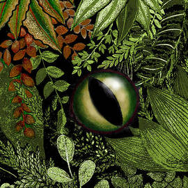 Carol Jacobs - Jungle Eye