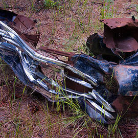 Bob and Nadine Johnston - Junk Art #1 National Forest