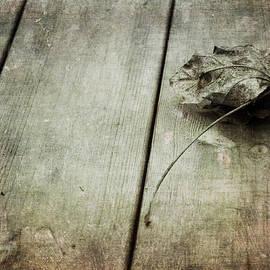 Randi Grace Nilsberg - Just a Memory