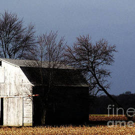Tina M Wenger - Just Another Very Old Outbuilding
