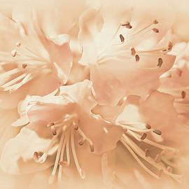 Jennie Marie Schell - Just Peachy Azalea Flowers