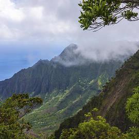Brian Harig - Kalalau Valley 5 - Kauai Hawaii
