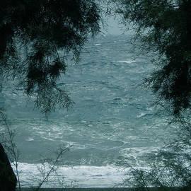 Colette V Hera  Guggenheim  - Kamari Oceon Trees Santorini Island Greece